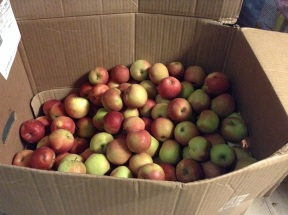 1/3 of the remaining apples
