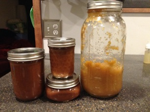 Canned apple butter and my remaining fermented apple sauce. Yummy!!